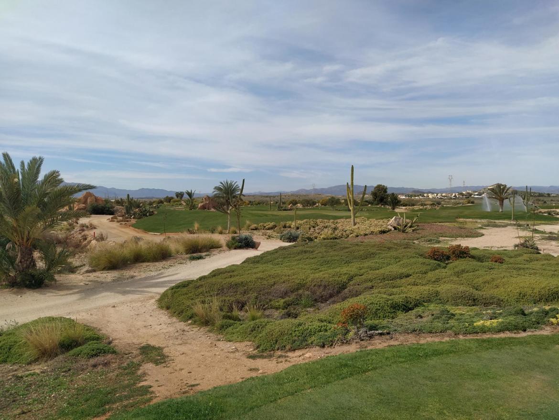 Desert Springs